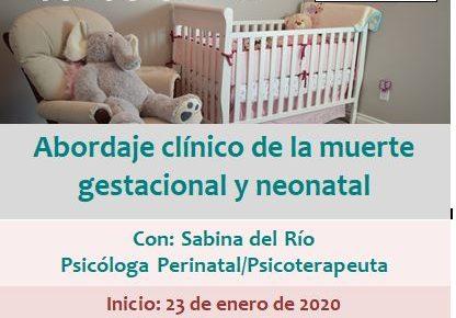 Curso online: Abordaje clínico de la muerte gestacional y neonatal