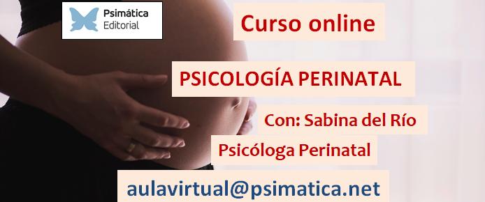 Curso online (19 de mayo 2020): Psicología Perinatal, comprensión psicodinámica e intervención en infertilidad, gestación, parto y puerperio